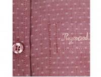 Raymond Fine Cotton Long Sleeve Shirt-4927